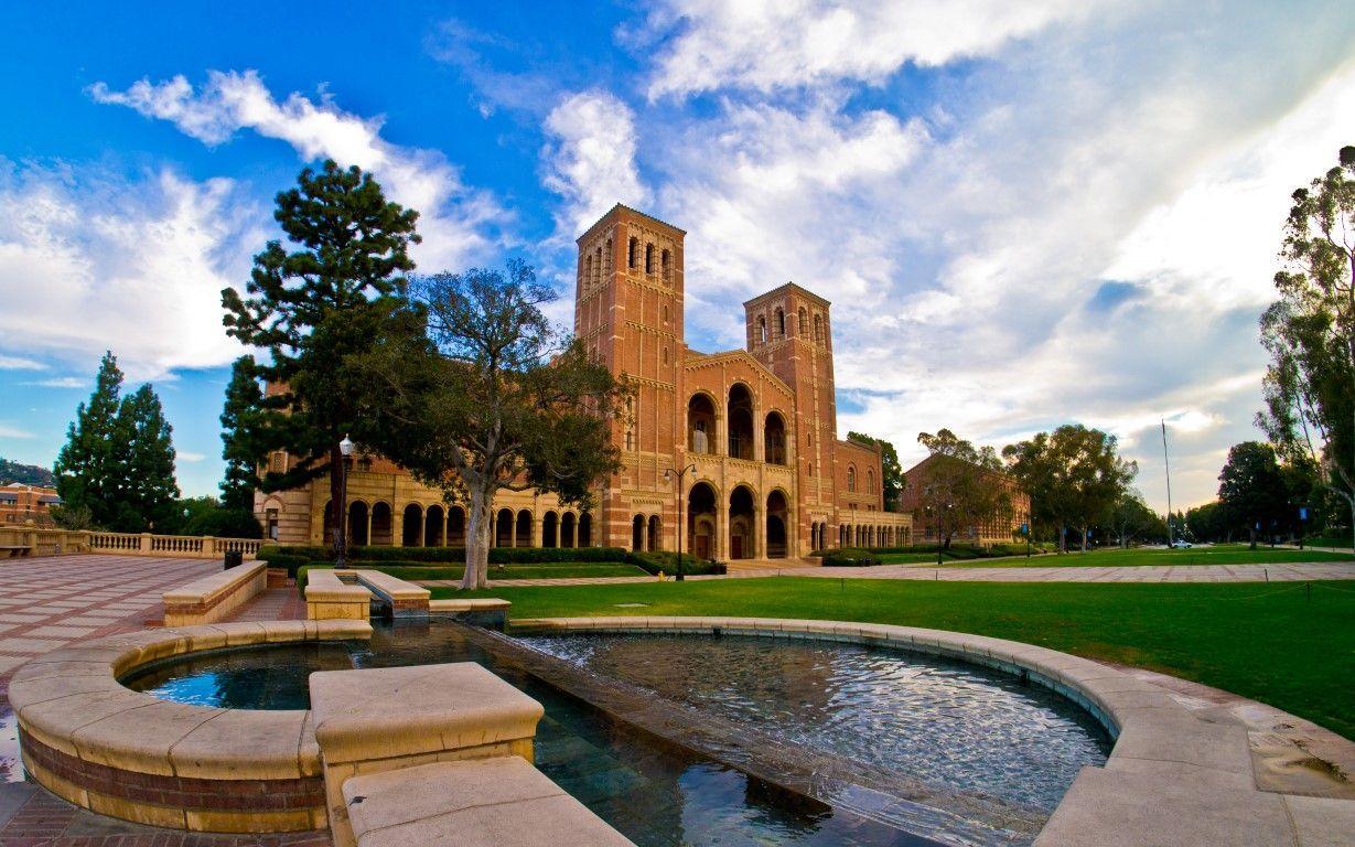 カルフォルニア大学ロサンゼルス校 UCLA のボランティア活動